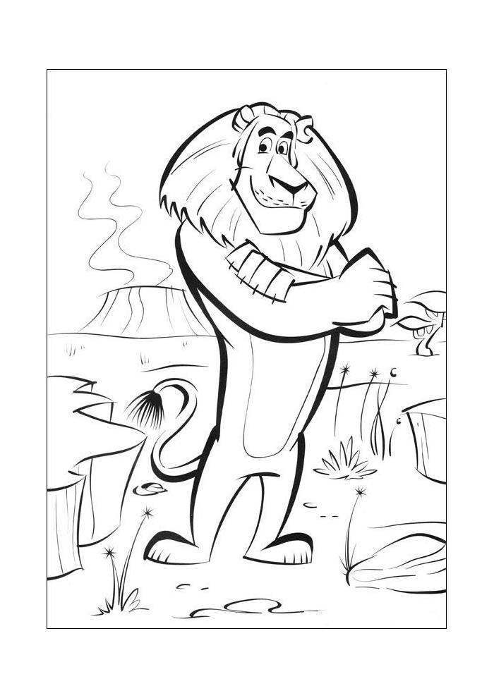Madagascar leeuw_1