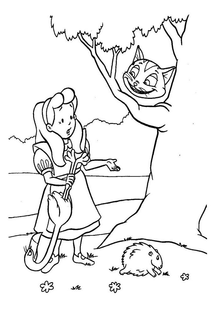 Alice in wonderland - alice en de poes