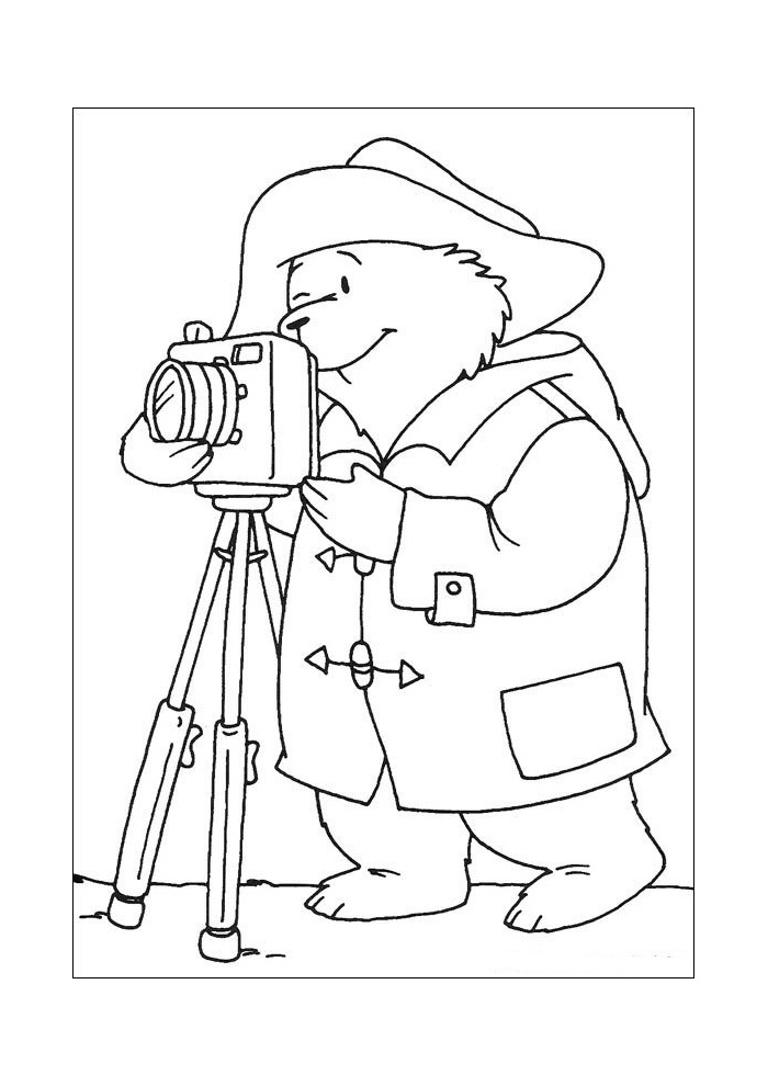 beertje paddington foto maken beertje paddington