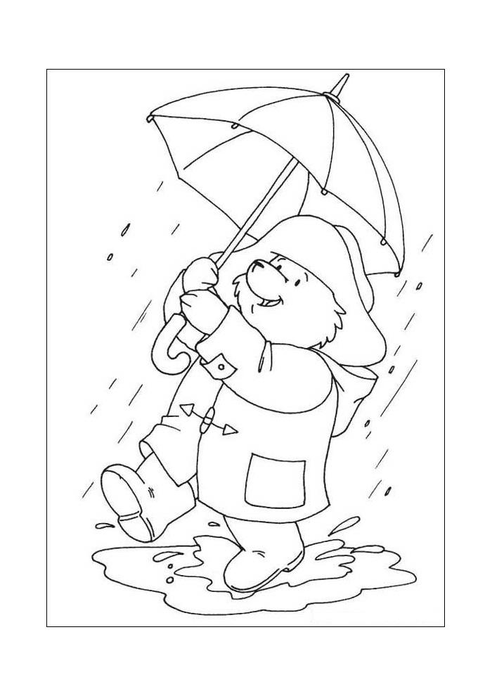 beertje paddington in de regen