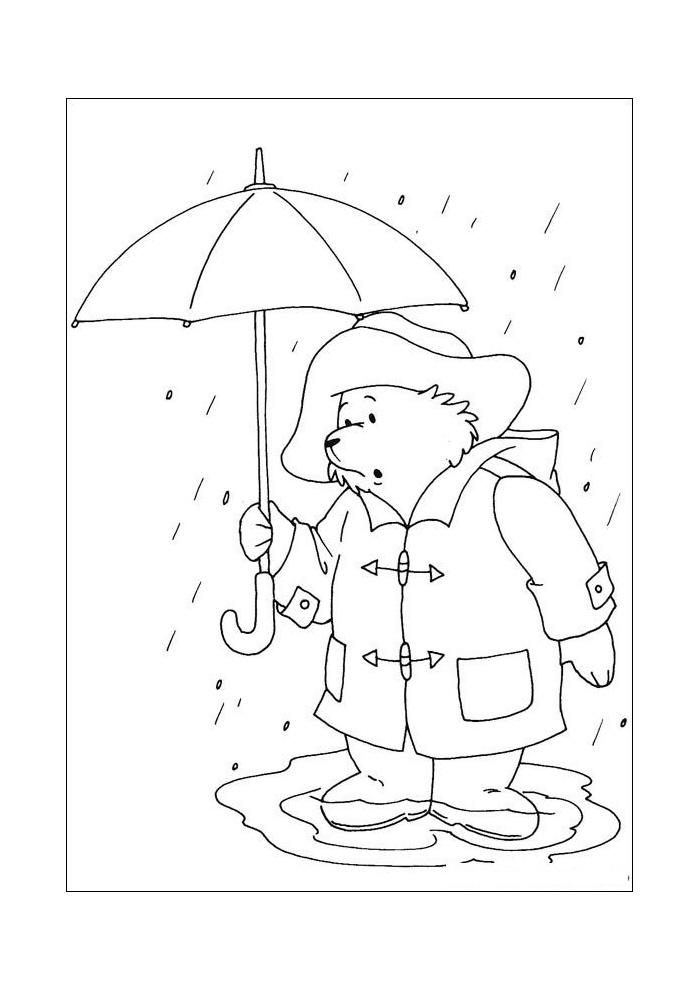 beertje paddington in de regen2