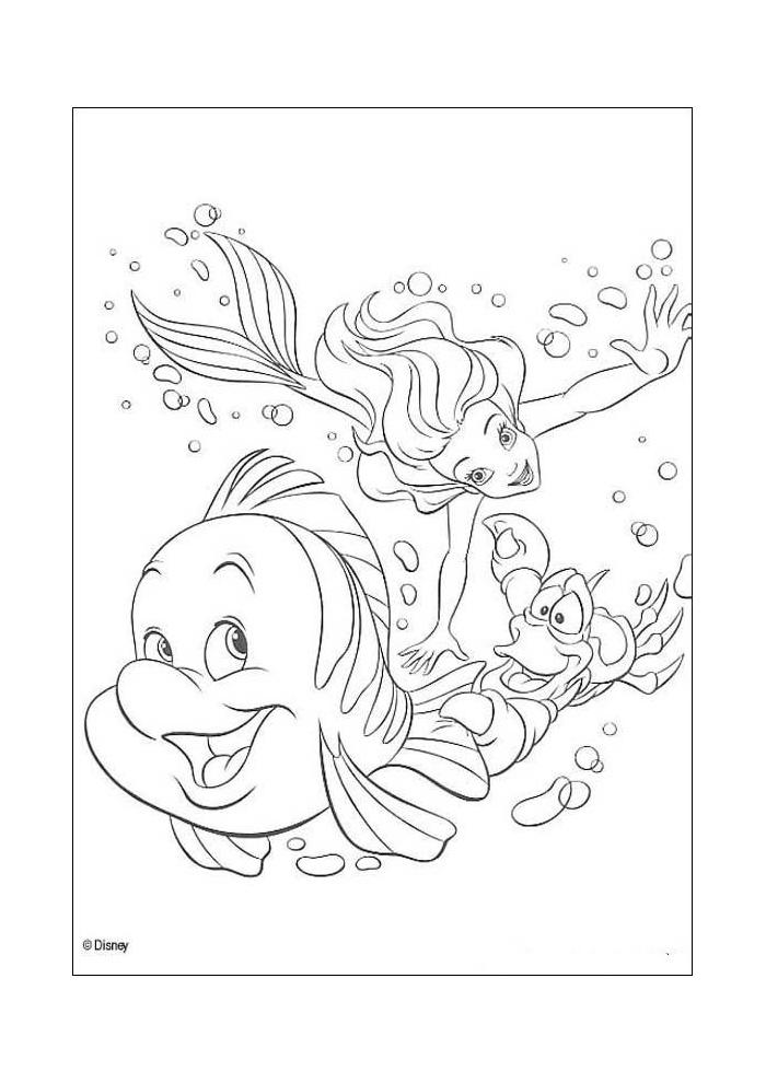 de kleine zeemeermin ariel sebastiaan en botje de kleine