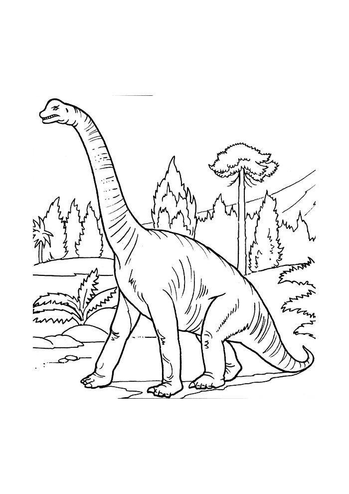 dinosaurus5