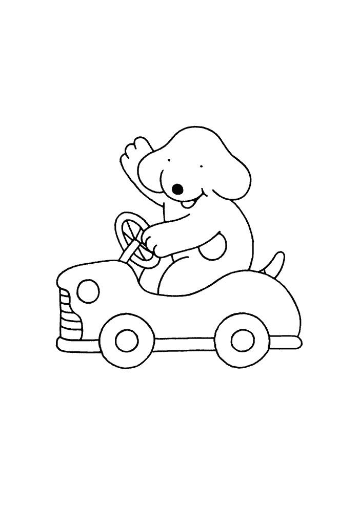 Dribbel - in de auto
