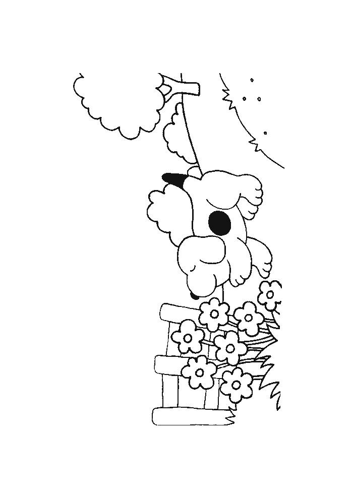 Dribbel - aan de bloem ruiken