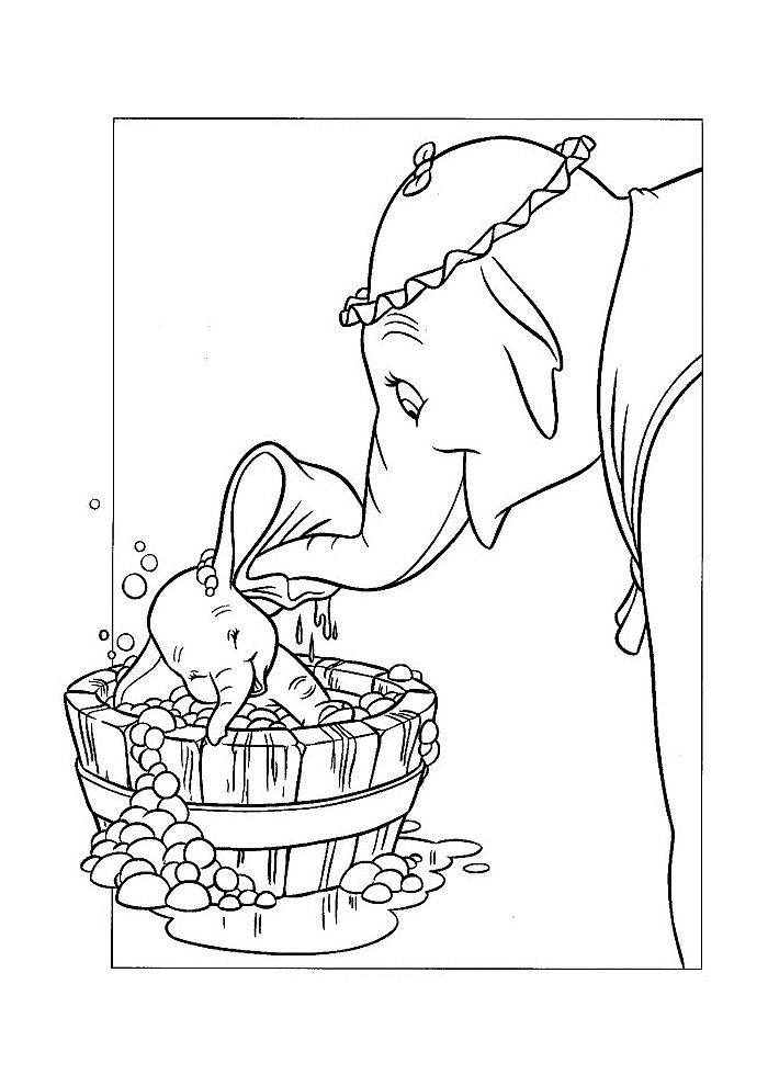 Dumbo - wassen