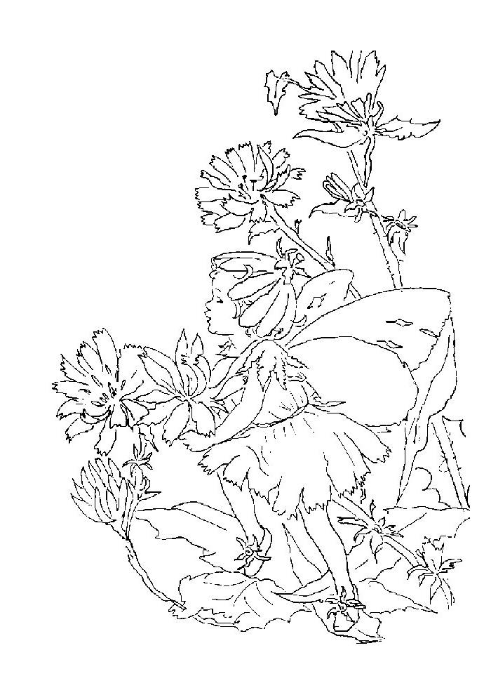 Elfjes - staan op een bloem