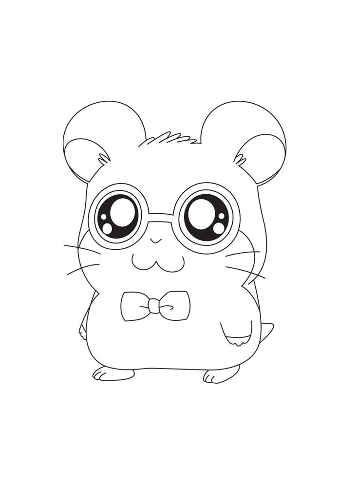 Hamtaro - mooie bril