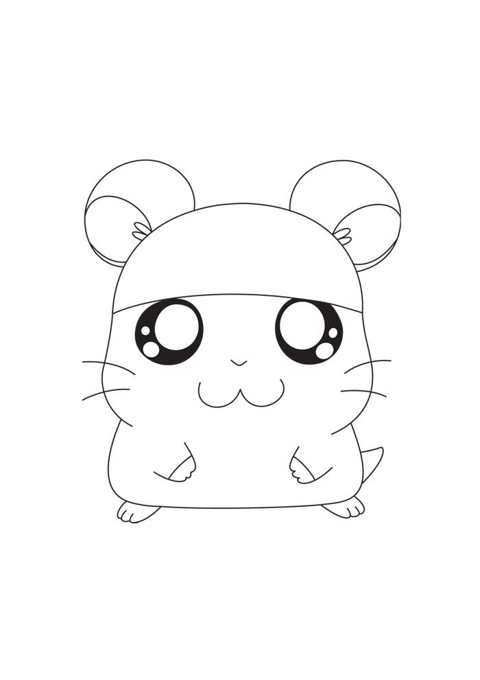 Hamtaro - met pet