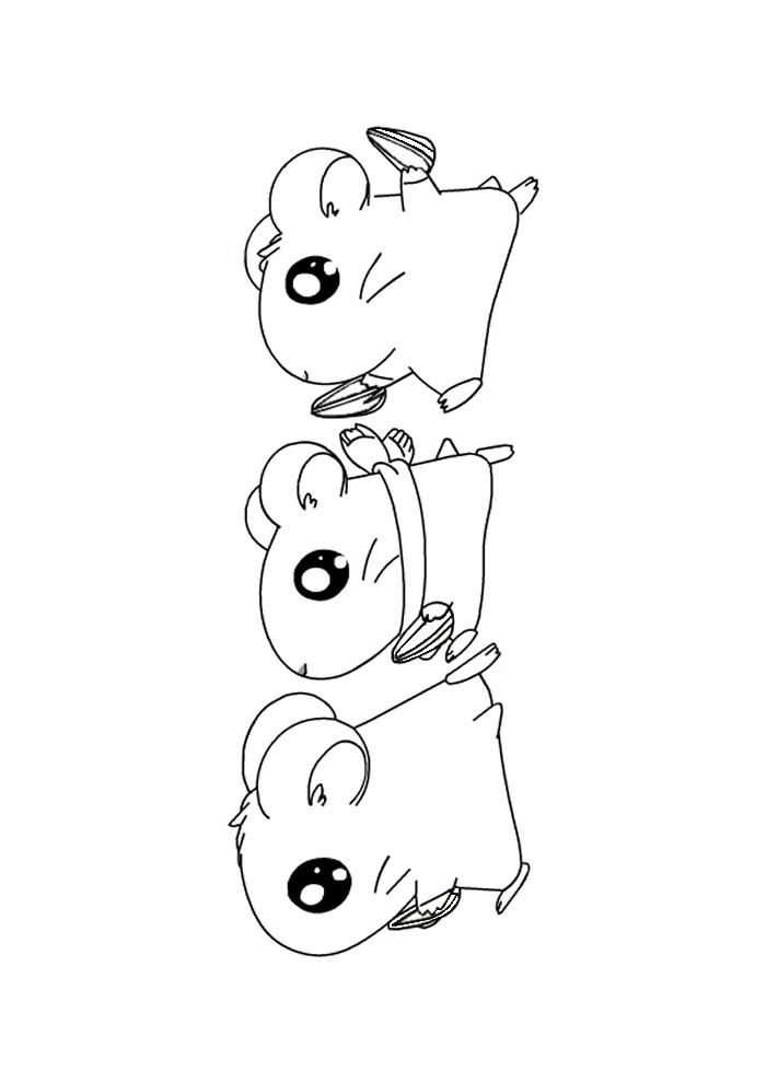 Hamtaro - met vriendjes