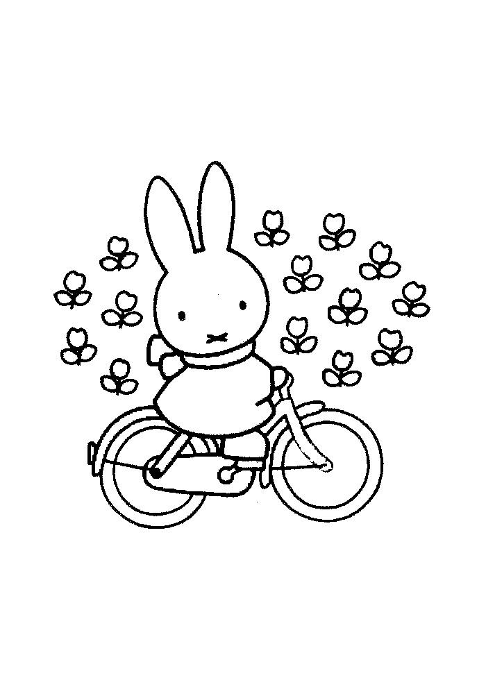 Nijntje - op de fiets