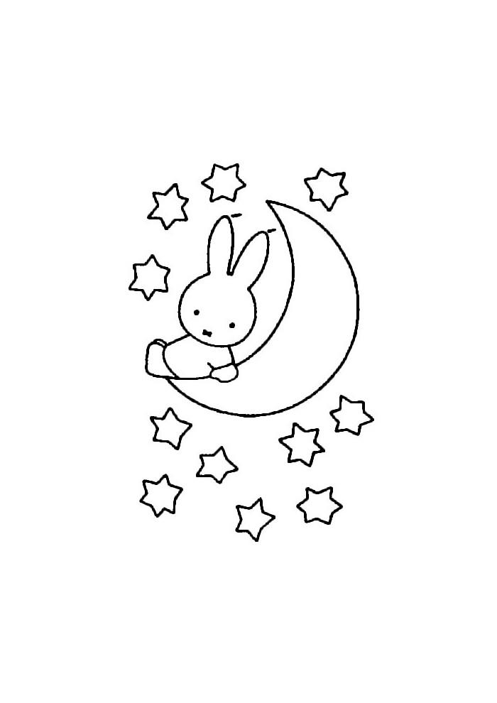 Nijntje - zitten op de maan