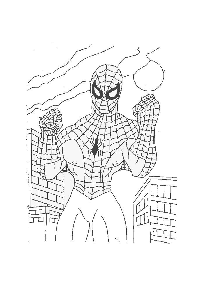 Spiderman - op het dak