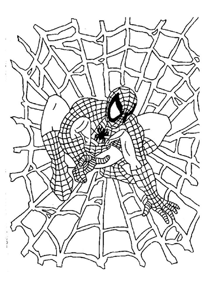 Spiderman - in een spinnenweb