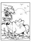de snorkels koe