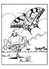 de snorkels vlinder